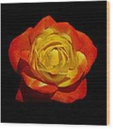 Judy Garland Rose Wood Print