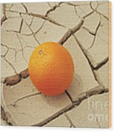 Juicy Orange And Drought. Wood Print by Alexandr  Malyshev