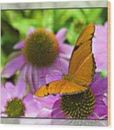 Julia Butterfly 2 Wood Print