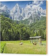 Julian Alps Farm Wood Print