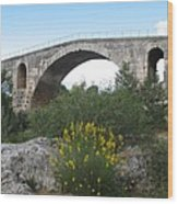 Julian Bridge Provence Wood Print