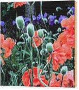 Julia's Garden II Wood Print