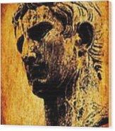 Julius Caesar  Wood Print by Michael Grubb