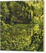 July Tranquil Indian Lake Wood Print