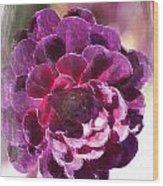 Jumbo Blossom Wood Print