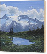 Jumbo Pass Pond Wood Print