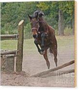 Jump Jump Wood Print