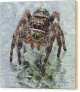 Jumper Spider 4 Wood Print