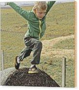 Jumping Haystacks Wood Print