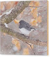 Junco In Snow Wood Print