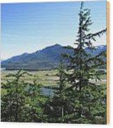 Juneau From Glacier Gardens Wood Print