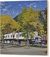 Juneau In The Fall Wood Print