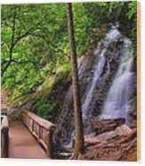 Juney Whank Falls Wood Print