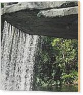 Jungle Cruise Waterfall Wood Print