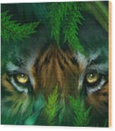 Jungle Eyes - Tiger Wood Print