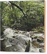 Jungle Flow Wood Print