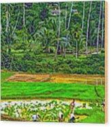 Jungle Homestead Paint Version Wood Print