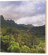 Jungle Landscape Wood Print