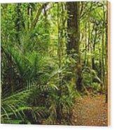 Jungle Scene Wood Print