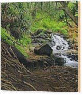Jungle Stream Kauai Wood Print