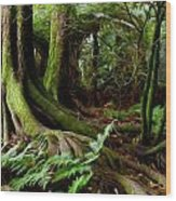 Jungle Trunks2 Wood Print by Les Cunliffe