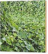 Jungle Vines Wood Print