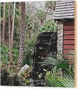 Jungle Water 2 Wood Print by Will Boutin Photos