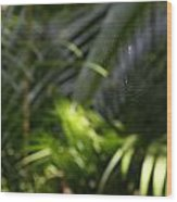 Jungle Web Wood Print