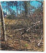 Junglescape1 2009 Wood Print