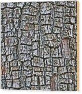 Juniper Bark- Texture Collection Wood Print