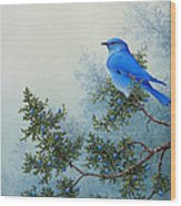 Juniper Berries Wood Print
