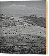 Juniper Hills To Snowy Arctic Peaks Black And White Wood Print