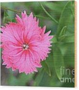 Just A Flower Wood Print