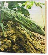 Just A Lil Lizard Wood Print