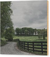 Just Around The Bend Wood Print by Tanya Jacobson-Smith