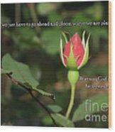 Just Bloom Wood Print