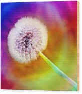 Just Dandy Taste The Rainbow Wood Print