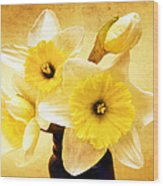 Just Plain Daffy 1 - Flora - Spring - Daffodil - Narcissus - Jonquil Wood Print