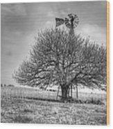Just Plain Kansas Wood Print by JC Findley
