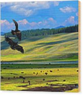 Juvenile Eagles Play Fight Wood Print