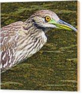 Juvie Wood Print