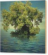 K15 Wood Print by Radoslav Penchev