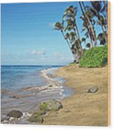 Ka'anapali Beach Wood Print