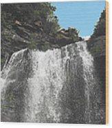 Kaaterskill Falls Ny Il Wood Print