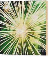 Kaboom Wood Print by Suzanne Luft