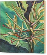 Kahili Ginger Wood Print