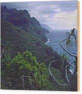 Kalalau Beginnings Wood Print