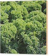 Kale Wood Print