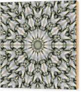 Kaleidoscope 28 Wood Print