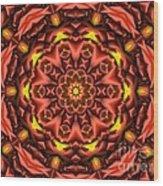 Kaleidoscope 42 Wood Print
